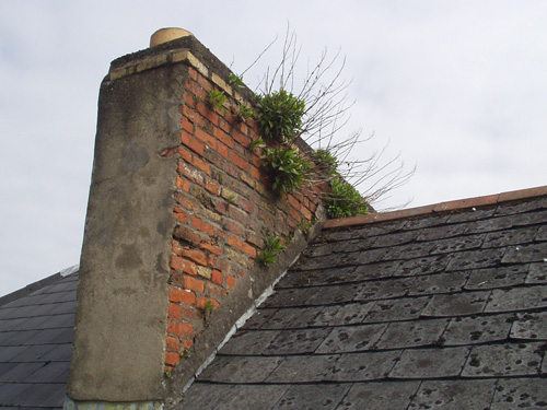 Chimney Prior To Works