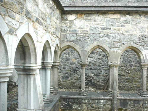 Cloister / Friary Ennis - National Monument
