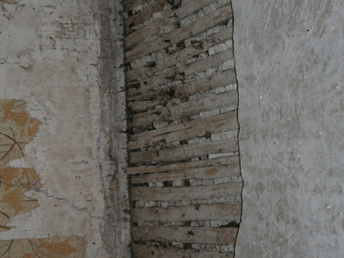 Lath & Plaster Revealed