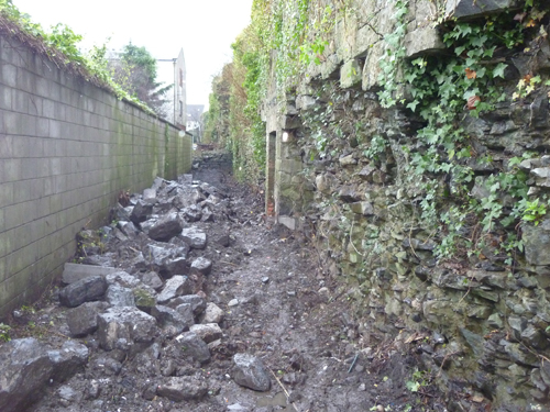 Condition Of Irishtown Area With Debris & Vegetation
